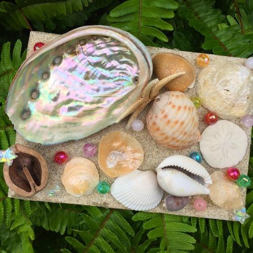 夏の思い出 ~サンドアート貝殻トレイ作り~