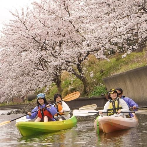 【春限定カヤック】湖上でお花見! 三方五湖コース[3時間]<午前 or 午後>