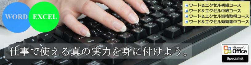 ⭐️⭐️初級 ワード&エクセル(回数制、マンツーマンレッスン)