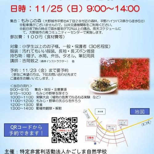 【11/25】もみじの天ぷらを作ろう