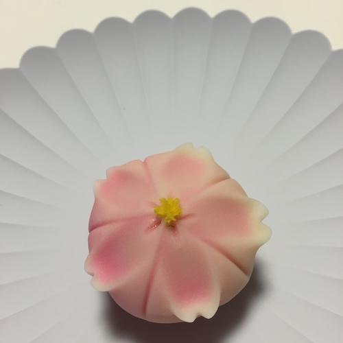 【(鎌倉)長谷坂ノ下会場】手毬の和菓子づくり体験講座(3月)