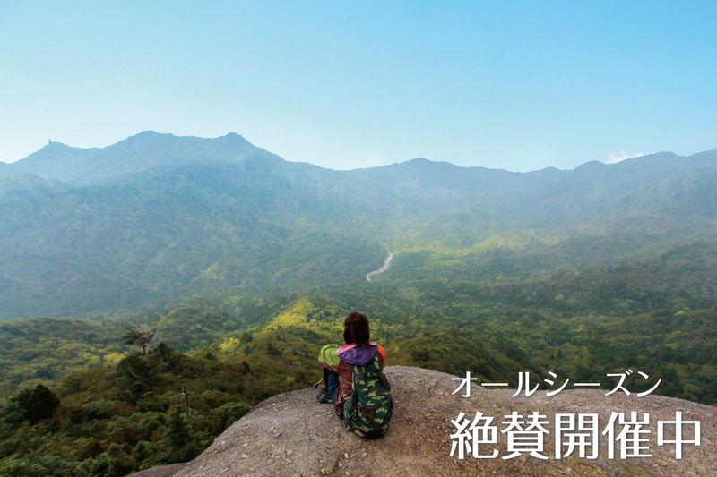山岳ガイドといく白谷雲水峡1日満喫トレッキング! 絶景の『太鼓岩』を目指そう!