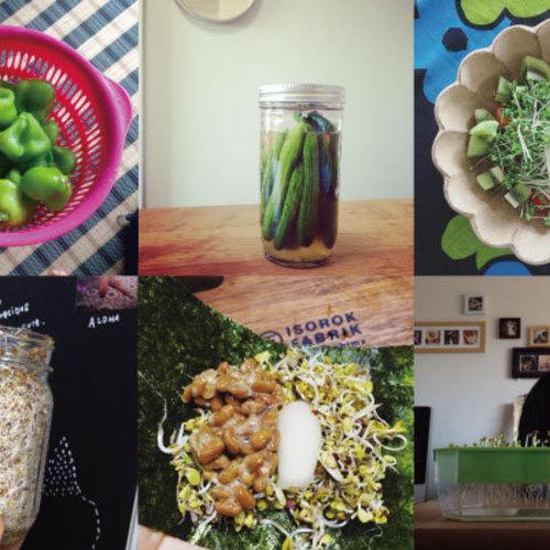 Chao's organic cooking (4月&5月はナッツチーズ&リジュベラック)