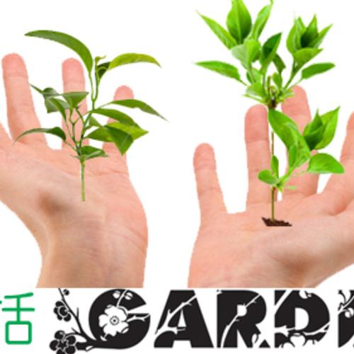 手話ガーデン