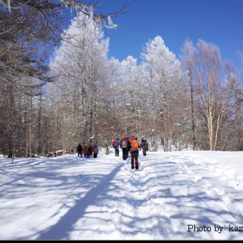 冬の櫛形山トレッキングツアー(日帰り)