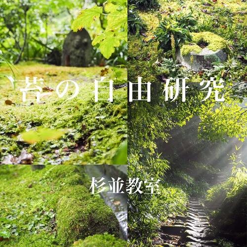 【自由研究・小学3年生以上限定】苔のテラリウム作成【杉並教室】