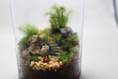 苔のテラリウムワークショップ [清澄白河リカラボ]