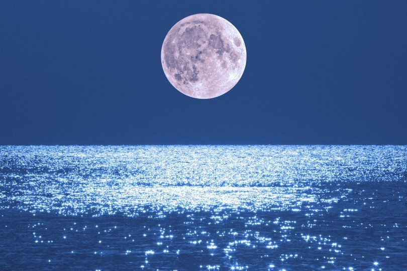 【11月23日 17:45 ~ 19:00 開催】full moon yoga