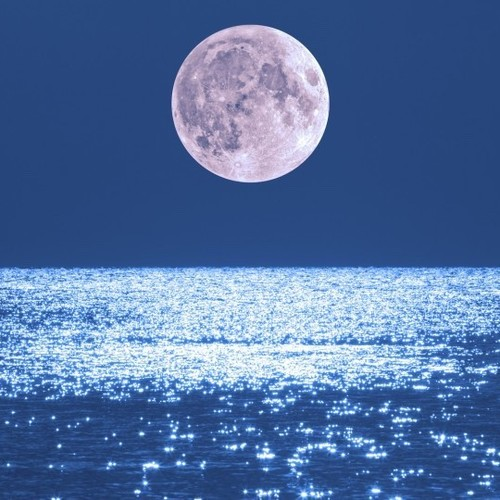 【12月23日 15:15 ~ 16:30 開催】full moon yoga