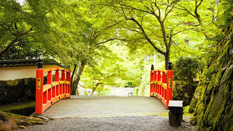 """""""Ohara"""" in Kyoto, Sanzenin, Shou-rin-in,Hohsen-in"""