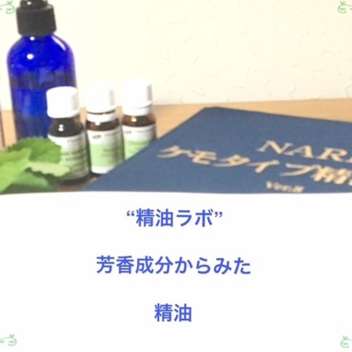 5月12日(土)精油ラボ:芳香成分からみた精油
