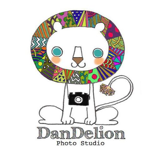 Photo Studio DanDlion