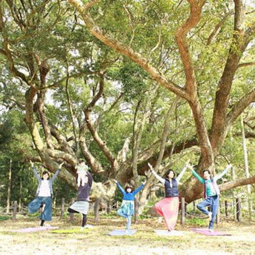 【下関市】5/25 樹齢1000年の大楠の下で「お外deYOGA 」