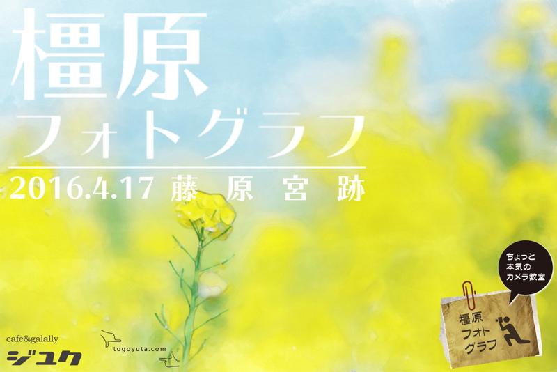 橿原フォトグラフ 藤原宮跡の菜の花