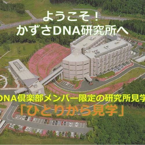 DNA倶楽部メンバー限定の研究所見学「ひとりから見学」