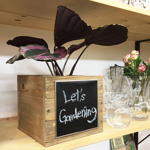 【3月•4月】ガーデンデザイナーと『メッセージも書けちゃう! 木製鉢カバー作り』