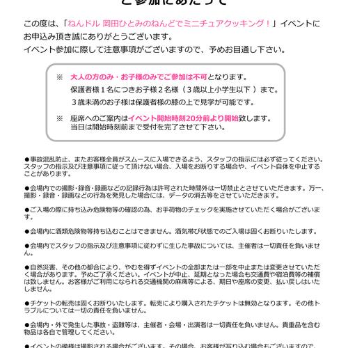 ねんドル 岡田ひとみのねんどでミニチュアクッキング!