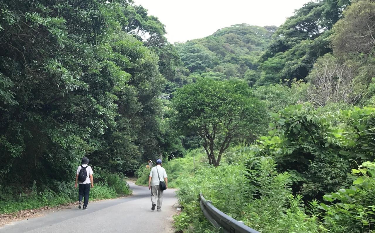 【8/21火曜日開催】デジカメ散歩(担当:有田)
