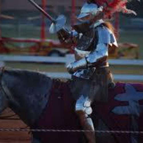 騎馬模擬戦 体験会