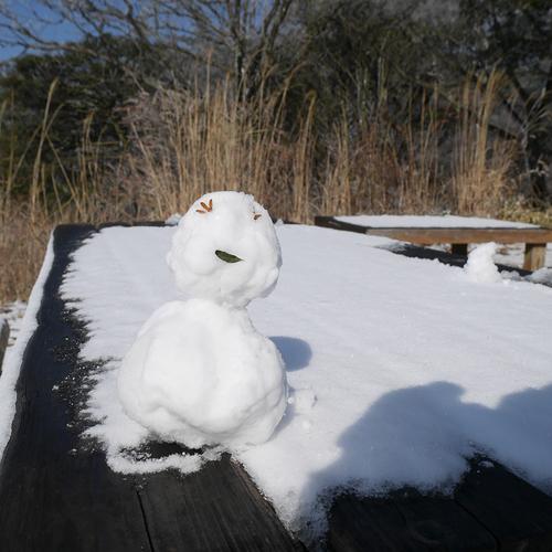 山撮り写真教室「冬の色 - 真冬の奥摩耶 -」