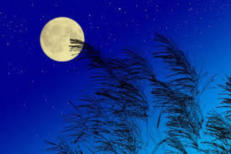 中秋の名月 お月見ヨガ