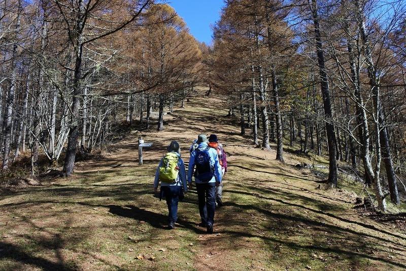 秋の櫛形山トレッキングツアー(日帰り)