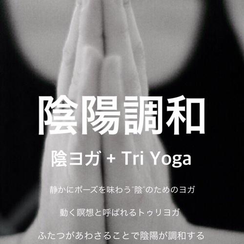 【枚方】陰陽調和 陰ヨガ+トゥリヨガ