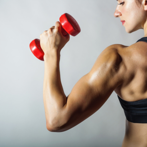 筋肉女子会💪
