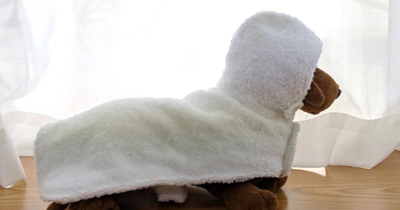 愛犬のレインコートとバスローブ(2dayホビー講座) ★動物愛護支援対象レッスン