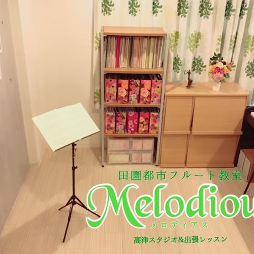 【フルート体験レッスン】メロディアス田園都市音楽教室