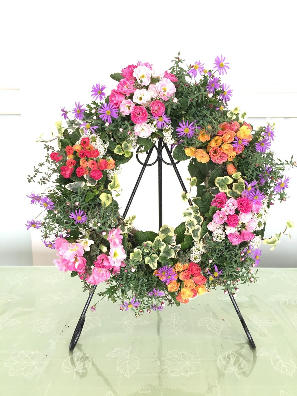 豪華バラ咲きプリムラジュリアンのリース