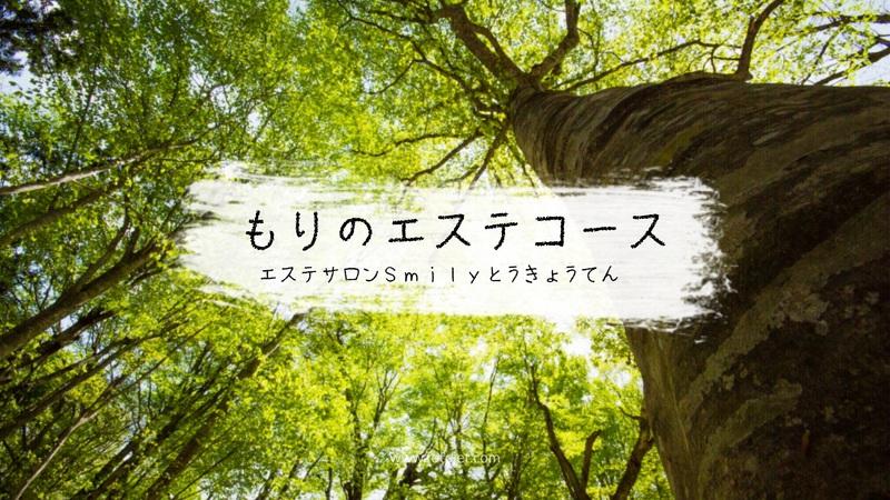 森の癒しコース 東京店