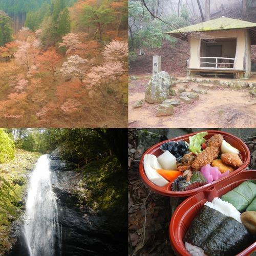 春の吉野山お花見トレッキング~遅咲きの奥千本でゆったり編~