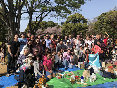 Ohanami party in Kitanomaru park