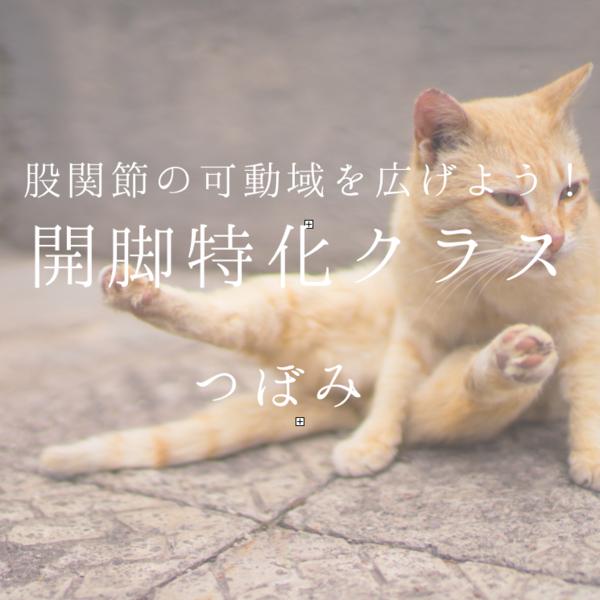 股関節の柔軟性を高めよう♪/講師:壺山順世【運動量★★★☆☆】