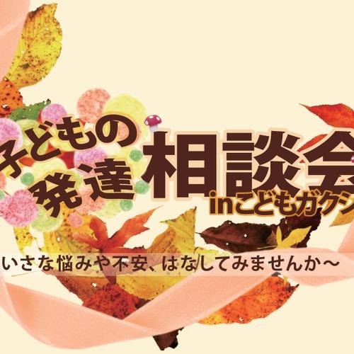 2015.10 子どもの発達相談会inこどもガクシャ《個別相談会・お茶会》