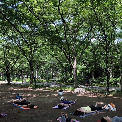 11/23 (金) 10:00~11:00 MORNING PARK YOGA in 靭公園