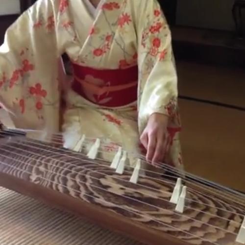 新春特別企画 お琴の体験講座 2月12日の会