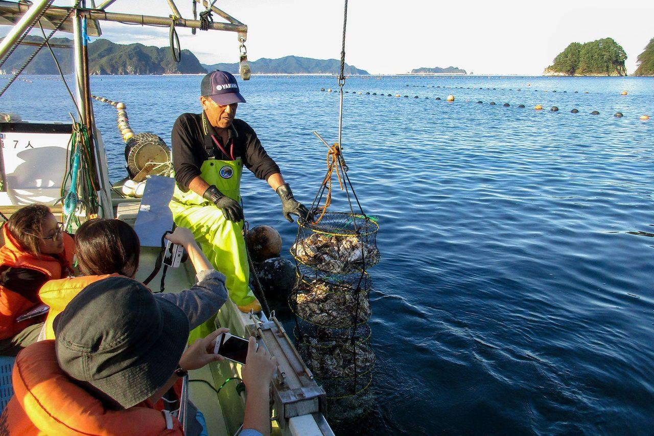 【10】牡蠣を味わう里海体験