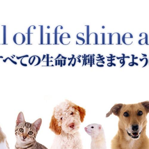 たかえす動物愛護病院 動物診療