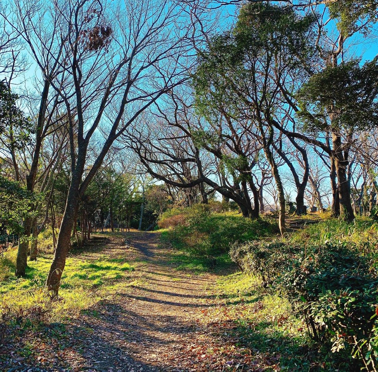 「森のトレピラ」鎌倉の森をトレッキングしながら、ピラティスをたのしみましょう!