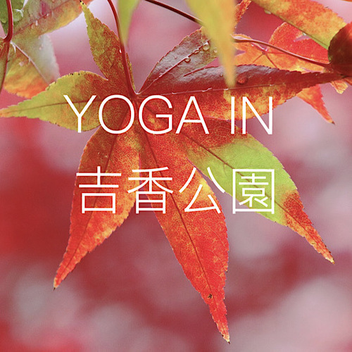 Park Yoga in 吉香公園