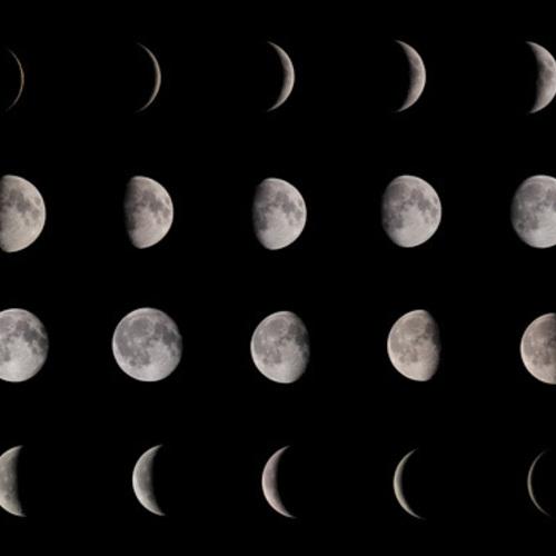 新月&満月ヨガ(お月謝&フリーパス対応)
