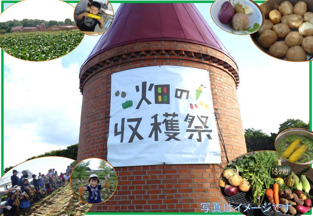 【畑の収穫祭】 旬の野菜を収穫して畑で食べよう