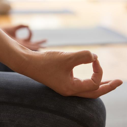瞑想の実り~基礎から始める極上の瞑想体験~