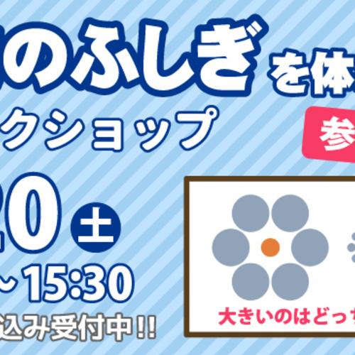 【7/20(土) 】視覚のふしぎ!ワークショップ(東京エリア)
