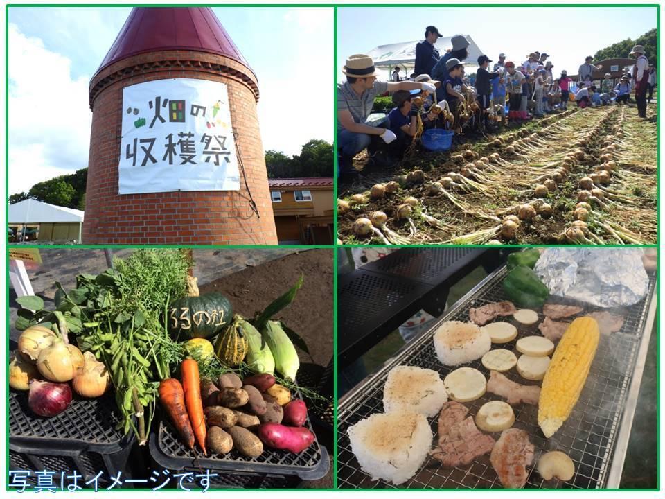 【畑の収穫祭】季節の野菜を収穫してBBQで食べよう