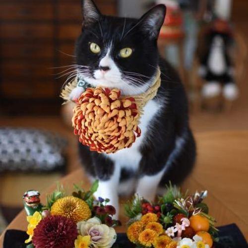 お正月を迎える花たち♪『食べちゃいたくなるような2段のおせちのアレンジ&ミニしめ縄飾り』