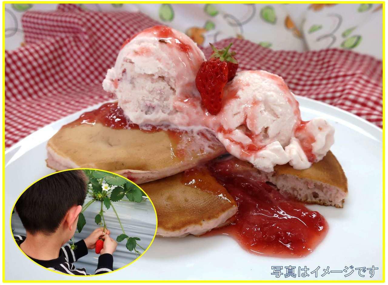 【JUNE FOOD FESTA】 いちごを収穫してアイスとパンケーキを作ろう
