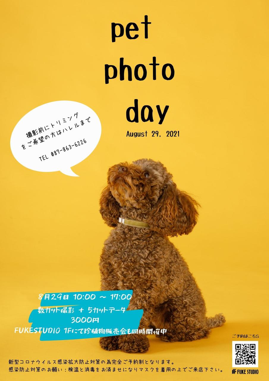 2021 8/29  PET PHOTO EVENT